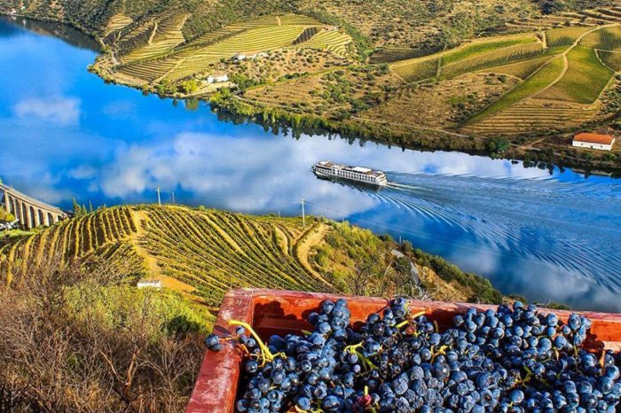 Trip to Douro Valley: 25-02-2018